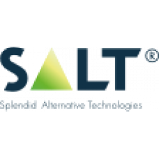 SALT - Китай